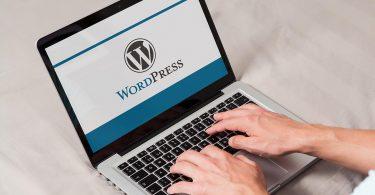 WordPress Admin Paneli